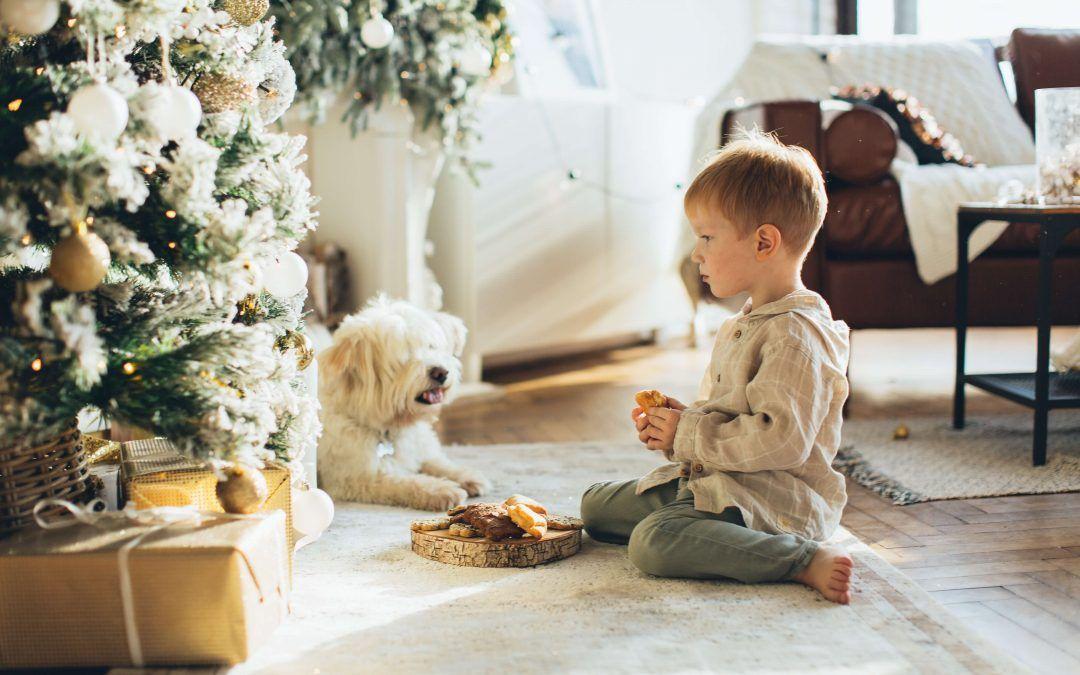 ¿Cómo será la custodia compartida en el estado de alarma estas navidades?